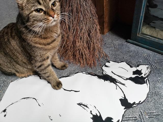 Von der Katze